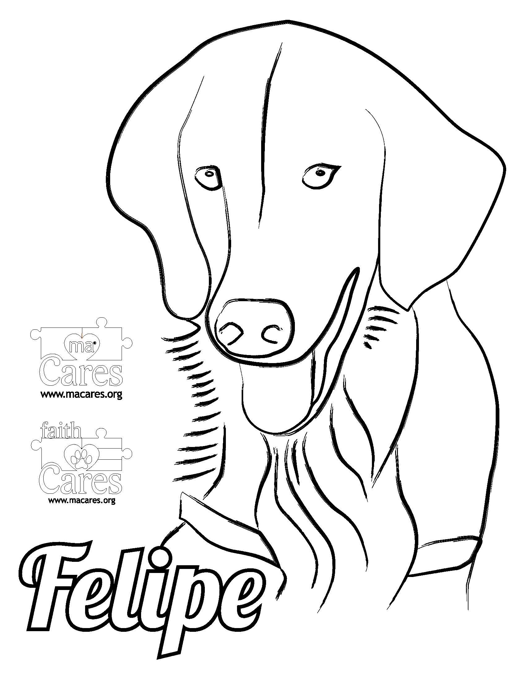 FELIPE faith Cares Service Dog
